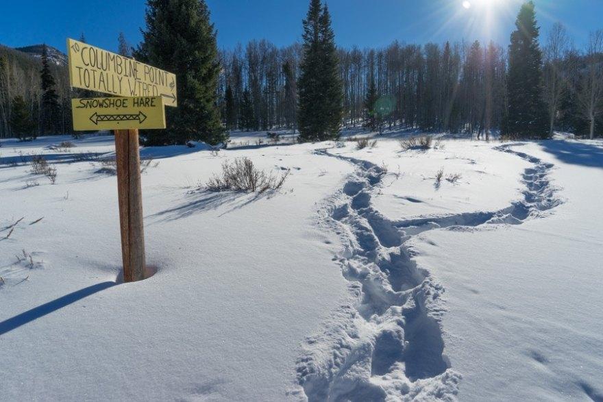 Snow mountain ranch snow shoeing