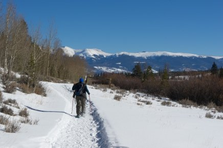 Colorado dog sledding-08872