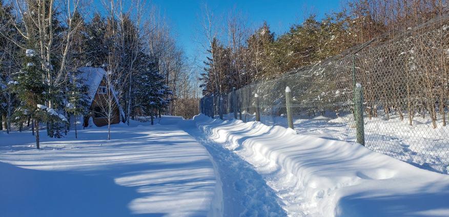 Quebec Winter feature-08