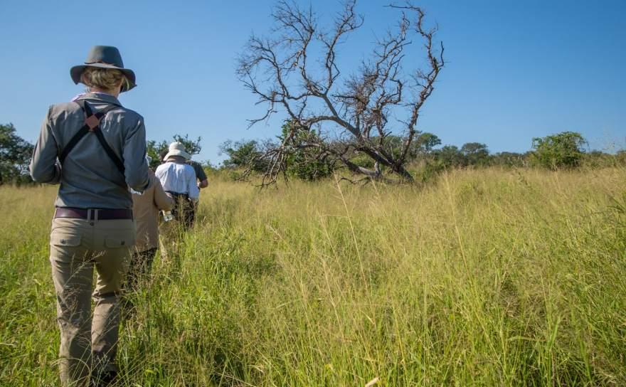 Thanda walking safari