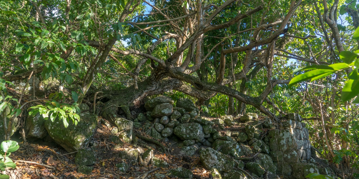 Marys point ruins saba
