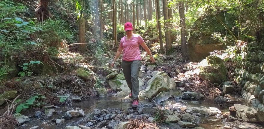 hiking the kumano kodo trail