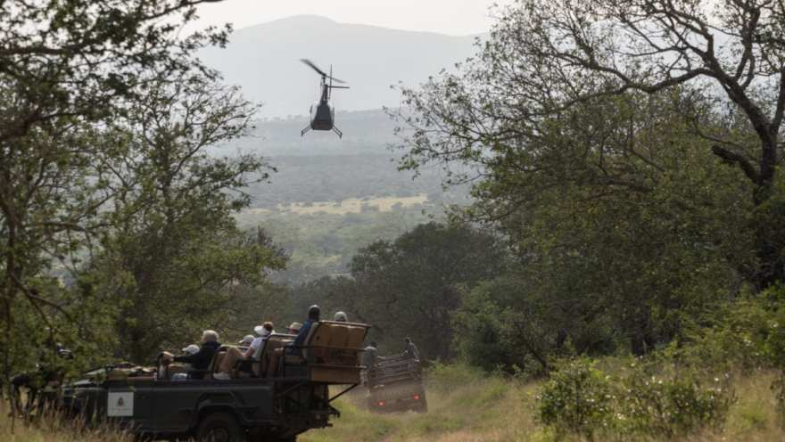 helicopter for rhino darting