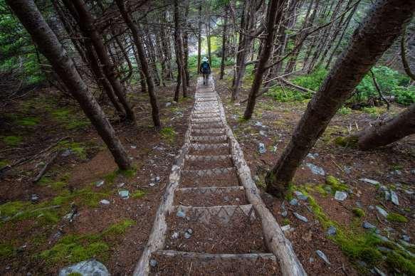 east coast trail flamber head hike