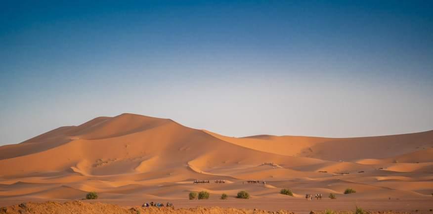 sahara desert camel tour