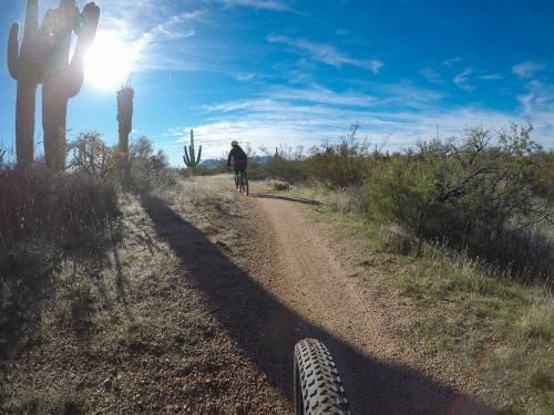 scottsdale desert mountain biking