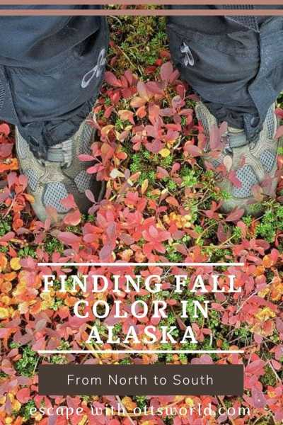 hiking boots fall foliage alaska