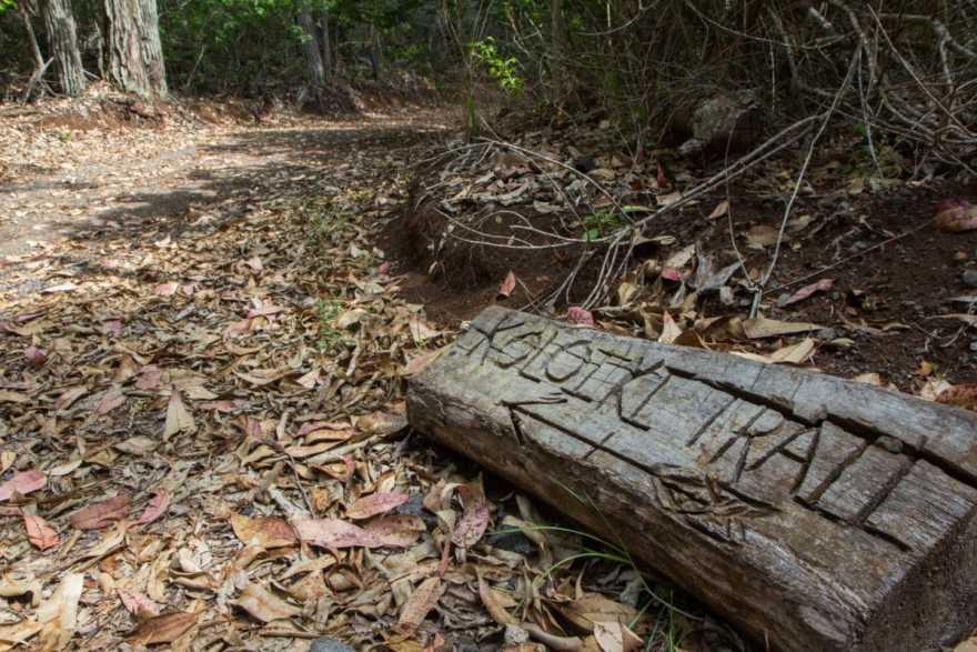 koloiki hiking trail lanai