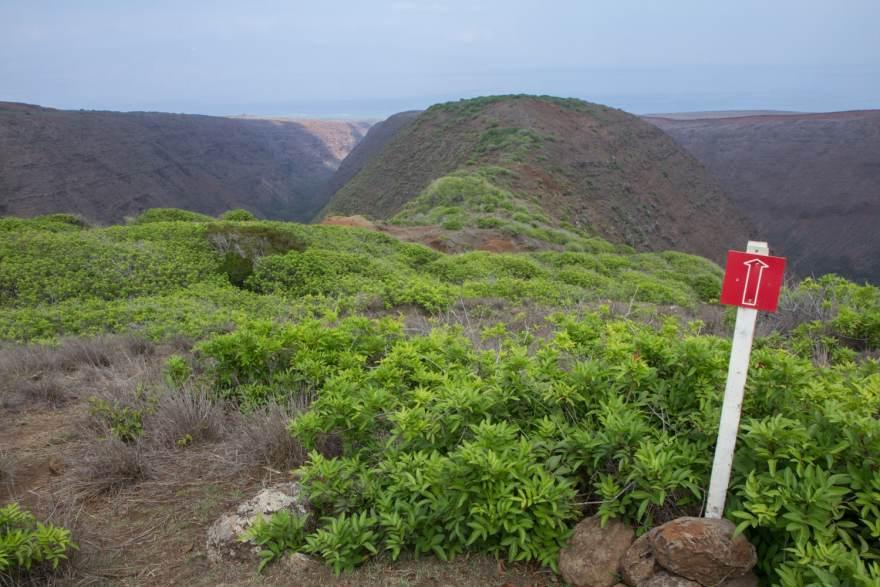 Koloiki Trail trail marking