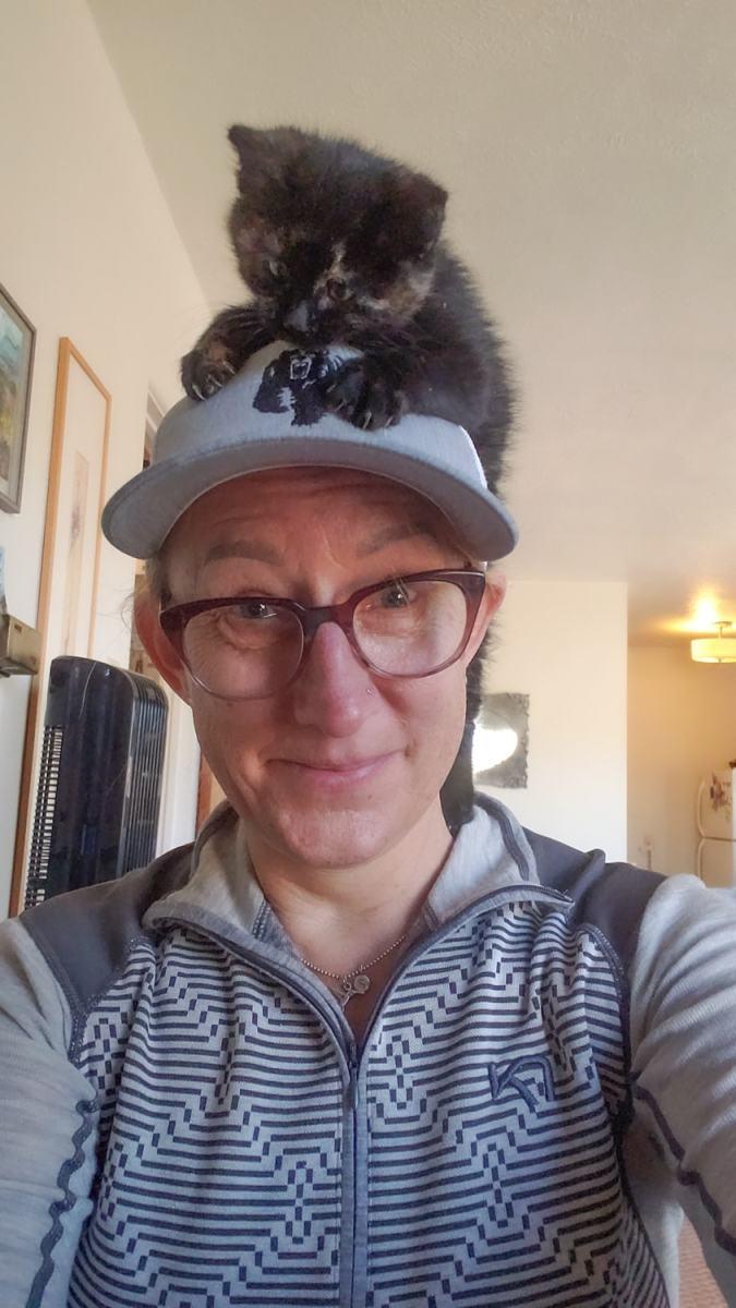 kitten on my head