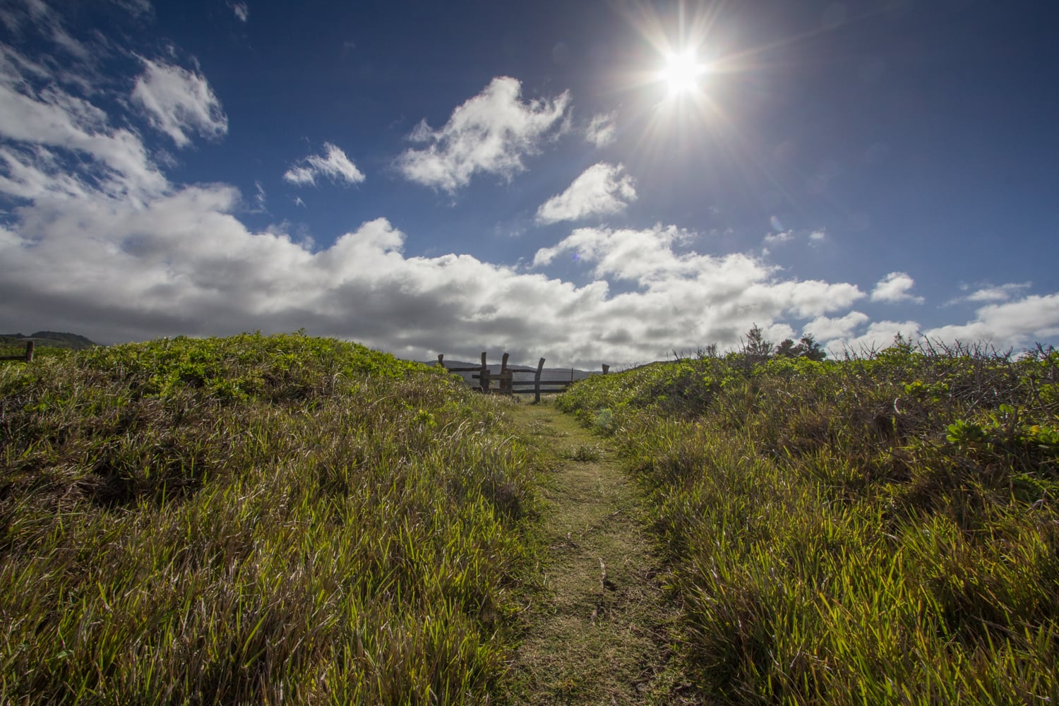 Kahakuloa Head path
