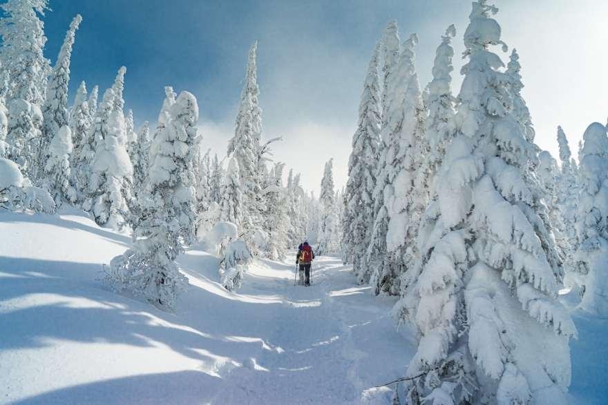 snowshoeing beginner