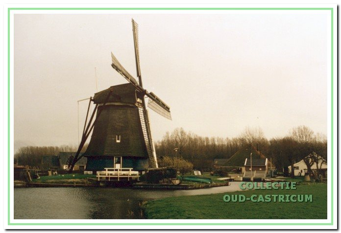 afb. 3 De molen De Dog in Uitgeest nabij de grens van Castricum - ook vaak Castricummermolen genoemd - omdat deze molen meerdere eeuwen de bemaling verzorgde van de Castricummerpolder.
