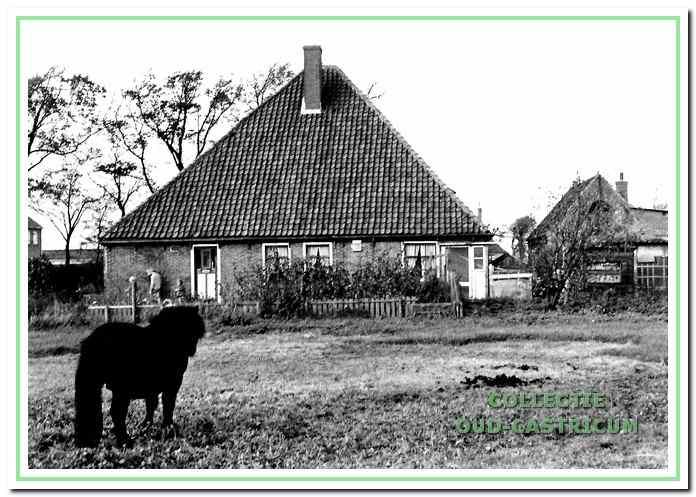 De boerderij van Piet Veldt, aan de Kooiweg 29.