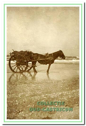 Schelpenvisserskar met paard van strandvonder Engel Zonneveld (Boon).