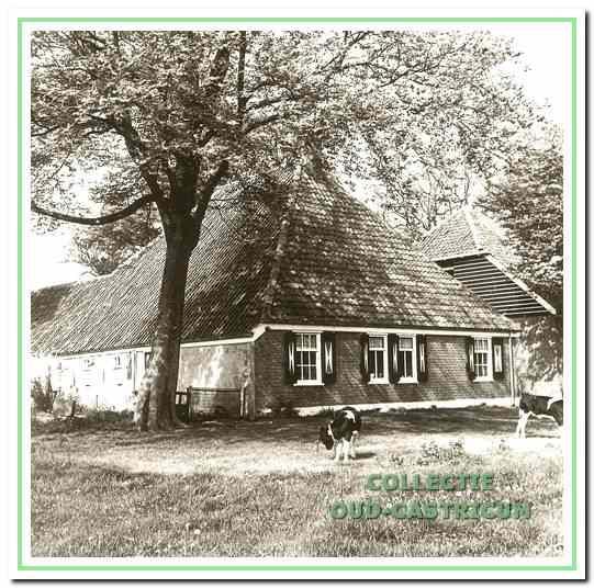 De oude boerderij Zeeveld.
