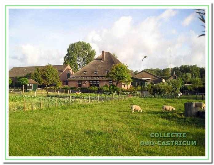 De huidige boerderij gezien vanaf de Brakersweg.
