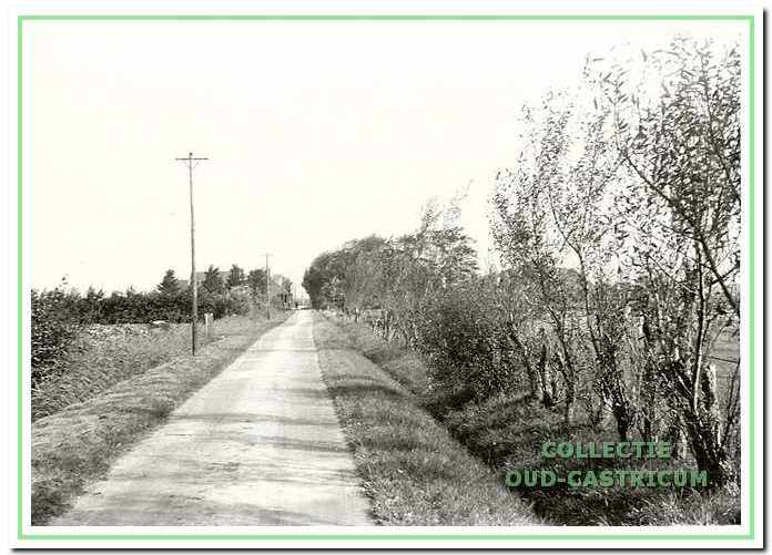 Het rechte deel van de Kooiweg tussen Eerste Groenelaan en Brakersweg.