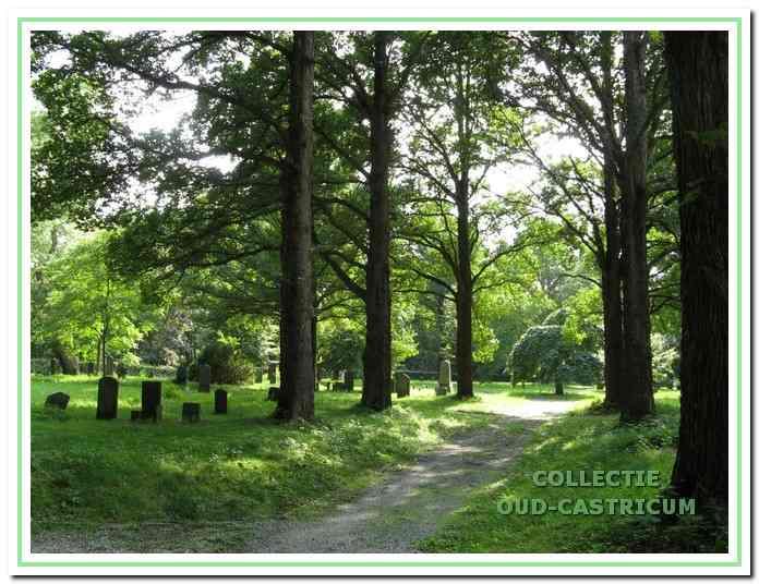De gesloten begraafplaats op het terrein van het vroegere Provinciaal Ziekenhuis Duin en Bosch.
