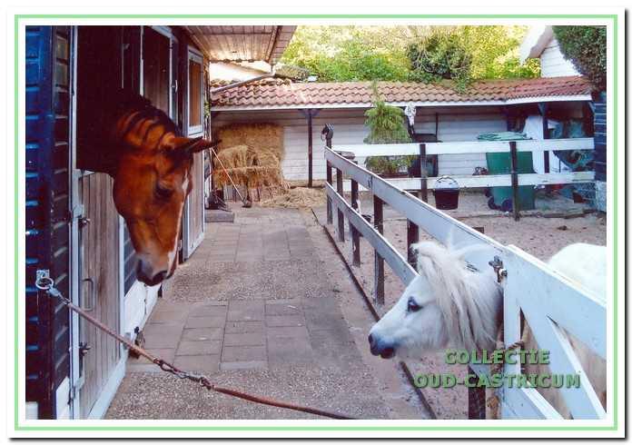 De mogelijkheid om paardente houden ...