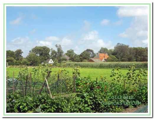 De Oosterbuurt is een karakteristiek dorpsgedeelte waar de structuur van gespreide (lint)bebouwing van huizen en boerderijen, stallen en schuren is behouden.