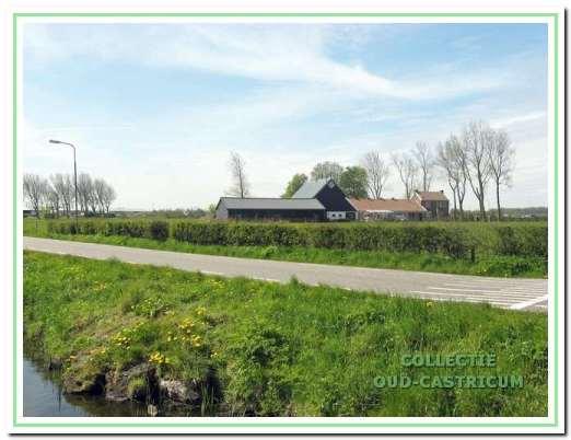 Aan de oostrand van de Oosterbuurt, waar sloten ontbreken, bestaan nog enkele restanten van meidoornhagen. Voor de komst van het prikkeldraad en later het schrikdraad hielden daar meidoornhagen het vee in de wei.