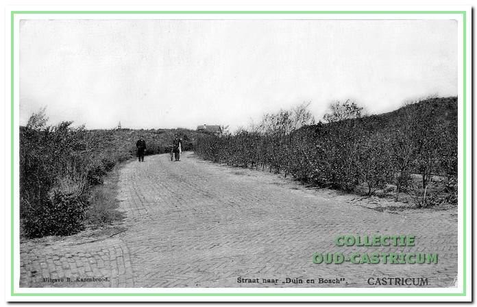 Foto van de Gestichtsweg, later Duinenboschweg genoemd, genomen in de richting van Duin en Bosch.