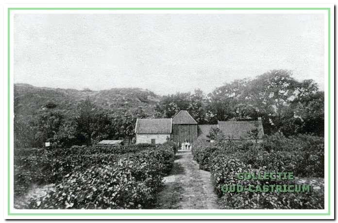 Boerderij 'de Papenberg' aan de rand van het duingebied, waar tot 1925 de familie Stuifbergen boerde. Daarna werd de boerderij overgenomen door Dorus Ineke.
