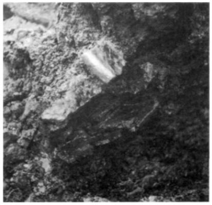 In de grond samengedrukte potscherven.