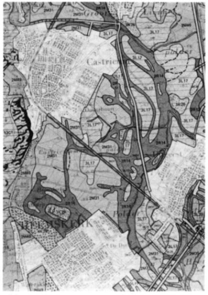 Detail van de geomorfologische kaart. De bodemgesteldheid vertoont een ingewikkeld patroon. De donkergrijze vertakkingen vertegenwoordigen de voormalige zee-erosiegeulen. (Detail blad 19 uitgave 1971, van de Stichting voor Bodemkartering te Wageningen).