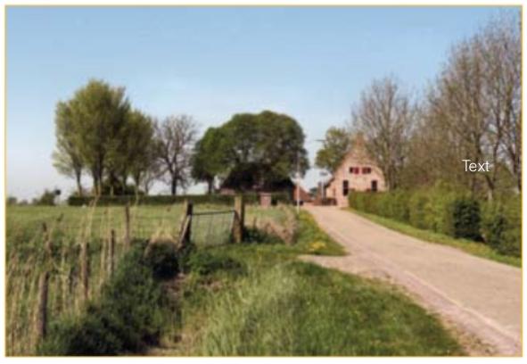 De wierde Groot Wetsinge. De kerk stond op de plek achter de glad geschoren heg. Achter de grote bomen staat de voormalige pastorie en rechts van de weg de kosterij met het schooltje.