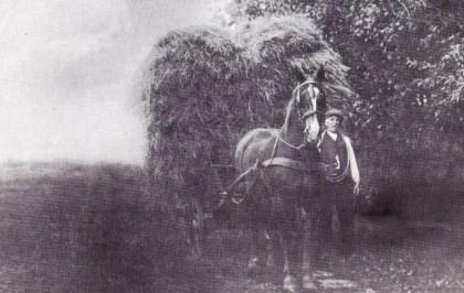 Albert Asjes + paard en wagen