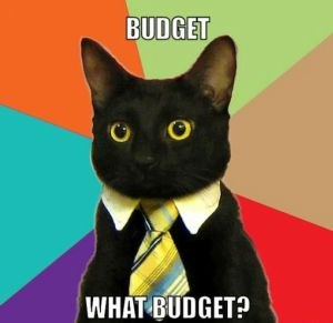 success-cat-budget-meme crop