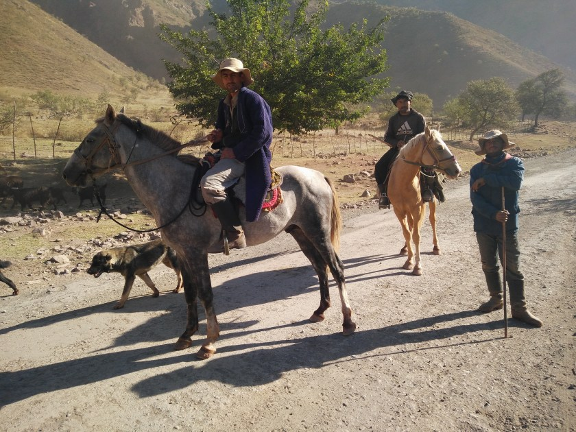 Tajik cowboys