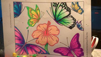 CeceliaAOFlowerButterflies1