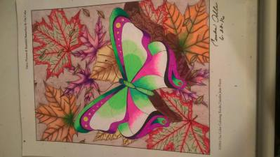 CeceliaAOFlowerButterflies2