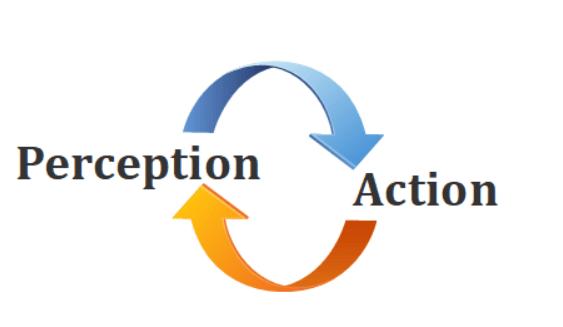Cycle-perception-action-pour-se-concentrer