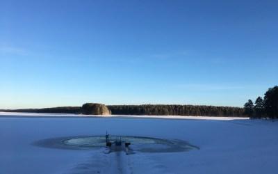 Marja-Stiina Suihko: Yhteinen luontolahja satavuotiaalle Suomelle