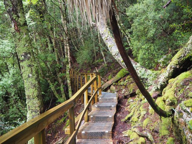 visiting Cradle Mountain with kids