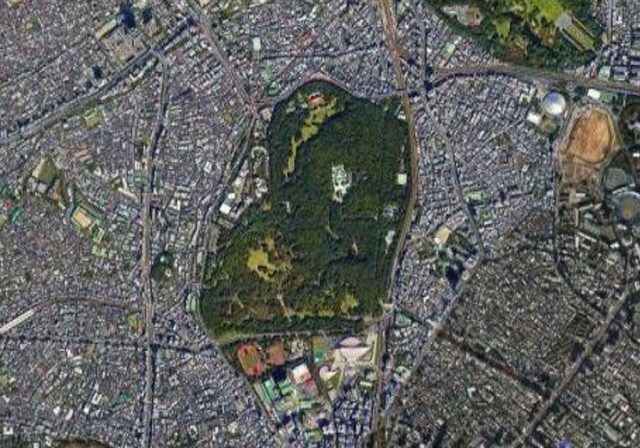 Meiji Shrine in the middle surrounded by urban Tokyo