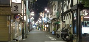 Top Things to do in Tokyo with Kids