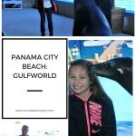 Panama City Beach:  GulfWorld