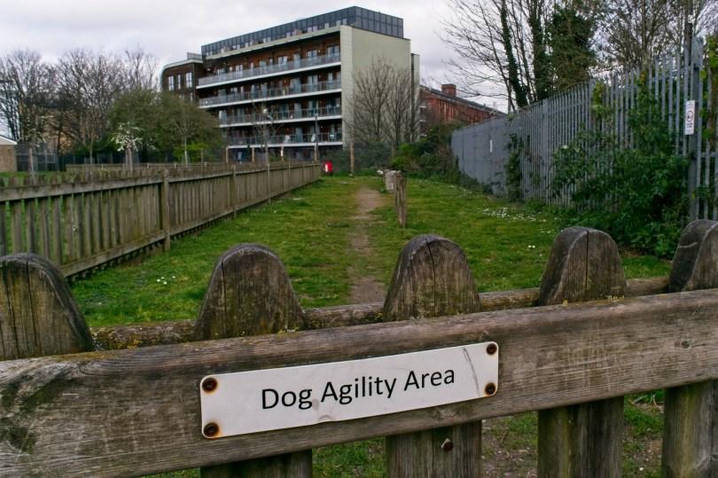 Four Seasons Green dog agility area