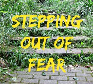 Stepping out of Fear – Stuart McCaw – Cross Kinetic