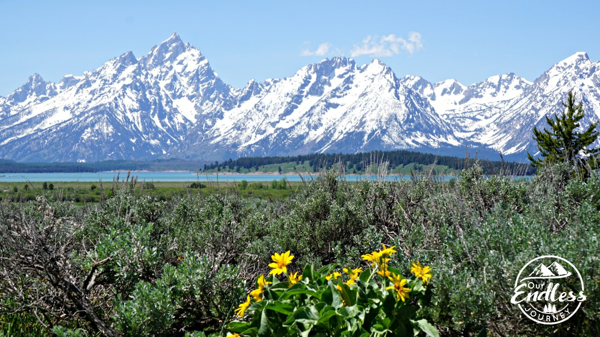 Spending The Day At Grand Teton National Park
