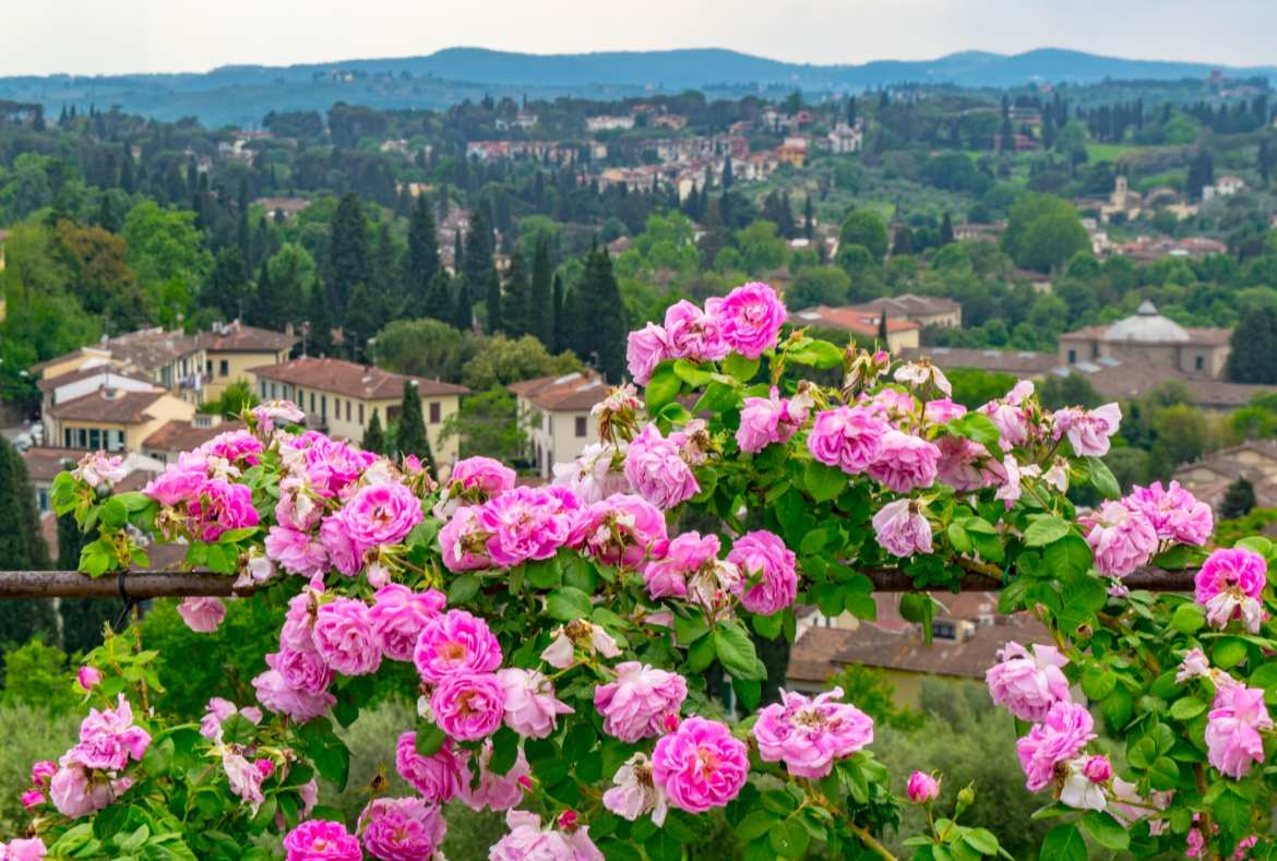 The Most Instagrammable Places in Florence: Boboli Garden