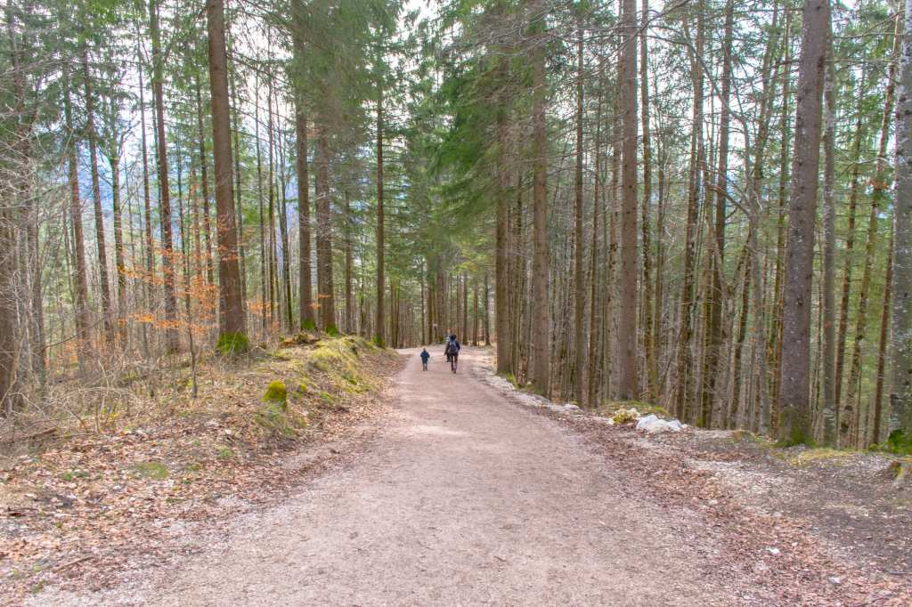 Day Trip to Neuschwanstein Castle From Munich: Hiking Trail