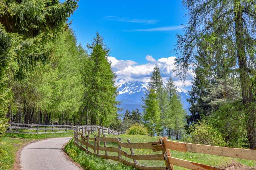 Best Things to Do in Bolzano Italy: Trails Near City