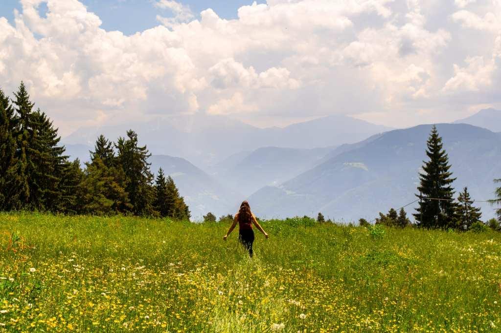 Best Things to Do in Bolzano: Flower Fields