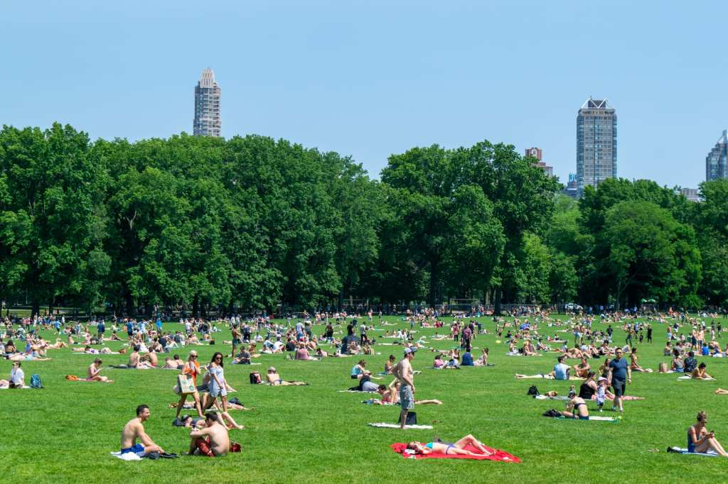 4 Day New York itinerary: Central Park lawn